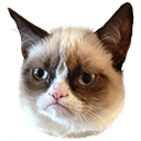grumpycat by ea