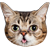lilbub by formidable
