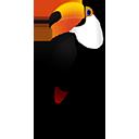 toucan random