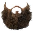 beard by Paul