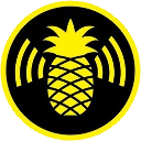pineapple hak5 random