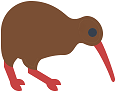 kiwi bird random