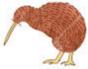 kiwibird random