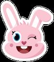 bunny offerzen random