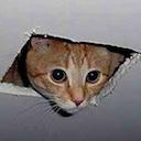 ceilingcat random
