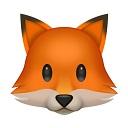 fox random