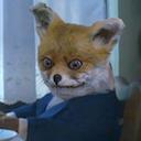 stoned fox random