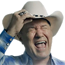screaming cowboy random