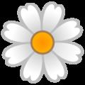 daisy random