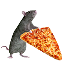 pizza rat random