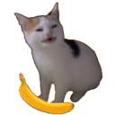 banana time random