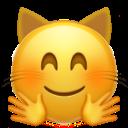 hugging_cat_face