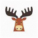 moose random