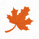 fall leaf random