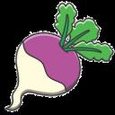turnip random