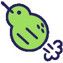 kiwipoot random