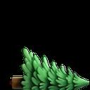 evergreen tree cut random