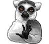 lemur relax random