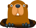groundhog random
