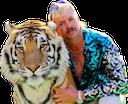tiger king random