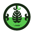 jmr junglejumpers jelles marble run teams