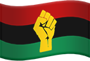 pan african flag fist random
