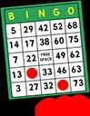 bingo card random