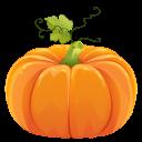 pumpkin random