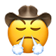 triumphant cowboy cowboy emojis