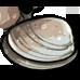 clam random