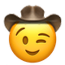 winking cowboy cowboy emojis