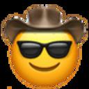 cool cowboy cowboy emojis