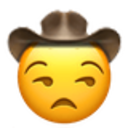 unamused cowboy cowboy emojis