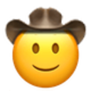 slightly smiling cowboy cowboy emojis