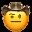 raised eyebrow cowboy cowboy emojis