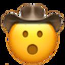 open mouth cowboy cowboy emojis