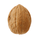 walnut random