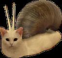 snailcat random