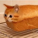 breadcat random