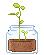 sprout random