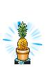 pineapple random