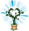plant random