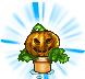 pumpkin plant random