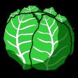 lettuce random