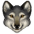 wolf random