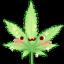 weed leaf random
