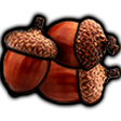 acorns random