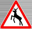 deer alert random