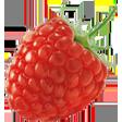 raspberry random