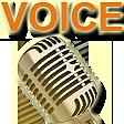voice random